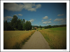 Maridalen (frode skjold) Tags: maridalen sandergård countryside summer oslo norway norge fujifilmx20 visitoslo clouds sky