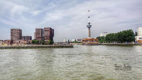 Parkhaven, Euromast, Nieuwe Maas, Rotterdam, Netherlands - 5210