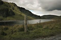 IMG_9617 (olivieri_paolo) Tags: supershots scotland open