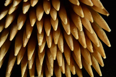 Toothpicks (rawdonfox) Tags: nikond5200 nikon toothpicks rawdonfox