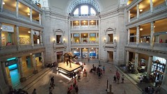 2017-08-23_09-55-44 (Kaemattson) Tags: smithsonian museum natural history washington dc elephant built environment washingtondc district columbia districtofcolumbia capitol united states downtown