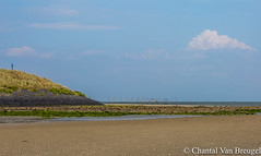 Texel (Chantal van Breugel) Tags: landschap strand texel zee mokbaai noordholland zomer juli 2017 canon5dmark111 canon70300