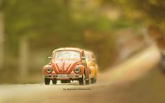 fast and furious (Ifigeneia Vasileiadis) Tags: autumn fall season orange newbeginning cars vintage beetles fastandfurious nikond7200 simulationofreality onthego mood retro minis romantic