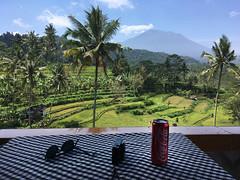Vulcano Agung (Wilm!) Tags: gurungagung bali indonesia vulcano vulkaan eruption lava evacuation mount montagne agung