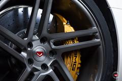 ItsWhiteNoise Mercedes-Benz SLS AMG Black Series - Vossen Forged Precision Series VPS-302T - © Vossen Wheels 2016 - 1005 (VossenWheels) Tags: carlifestyle itswhitenoise vossen sdobbinsvossen amg amgblackedition amgblackseries amgwheels andrewzalasin benzforgedwheels benzwheels blackedition blackseries elizabethwhite f355 f355miami forged madeinmiami mercedes mercedesamg mercedesamgwheels mercedessls mercedesbenz mercedesbenzamgaftermarketwheels mercedesbenzamgforgedwheels mercedesbenzamgwheels mercedesbenzslsaftermarketwheels mercedesbenzslsforgedwheels mercedesbenzslswheels mercedesbenzwheels sdobbins sls slsamg slsblackseries slsblackserieswheels samdobbins tuvverified vps vps302t vps302 vossenforgedprecisionseries vossenforgedwheels vossenmercedessls vossenprecisionseries vossensls vossenvps wheels