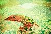 Flower (Shoji Kawabata. a.k.a. strange_ojisan) Tags: lca kodak e100g 35mm film filmphoto filmphotography lomo lomography double exposure doubleexposure analog analogphoto analogphotography camera analogcamera japan flower people crossprocessing umblera