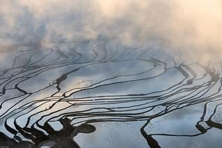 *Duoyishu terraced rice fields, the mistiest workplace on earth*