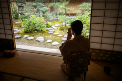 The Tea Ceremony (Miyajima, Japan 2015) (Alex Stoen) Tags: alexstoen alexstoenphotography autumn fall geotagged leicamptyp240 ngexpeditions natgeo nationalgeographicexpeditions summiluxm35mm travel vacation
