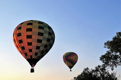 Duet (Patricia Henschen) Tags: balloonliftoff balloonclassic hotairballoon prospect lake memorialpark park prospectlake colorado coloradosprings downtown mountains mountain laborday labordayliftoff balloon balloons morning dawn
