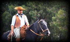 Otoniel Cardozo (Eduardo Amorim) Tags: gaúcho gaúchos gaucho gauchos dompedrito pampa campanha fronteira riograndedosul brésil brasil brazil sudamérica südamerika suramérica américadosul southamerica amériquedusud americameridionale américadelsur americadelsud eduardoamorim pilcha pilchagaúcha pilchasgaúchas pilchagaucha pilchasgauchas cavalos caballos horses chevaux cavalli pferde caballo horse cheval cavallo pferd cavalo cavall 馬 حصان 马 лошадь crioulo criollo crioulos criollos cavalocrioulo cavaloscrioulos caballocriollo caballoscriollos