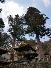 2017-03-19-13-06-34-Nikko_060 (Bavelso Habeji) Tags:
