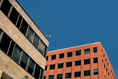Roch. MN (rubenb.hardwick) Tags: building downtown minnesota rochester architecture red brick cities