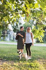 The golden hour (JosefineKphotography) Tags: pug goldenhour canoneos5dmarkiii canonef35mmf2 35mm canon canonmoment vingåker scenkonstsörmland södermanland sodermannland sweden swedishcountryside sunset puglife dog dogs dogdays bokeh beyondbokeh