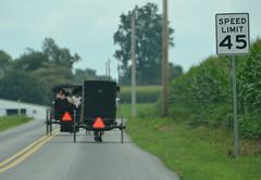 Passing at 45 (afagen) Tags: pennsylvania lancastercounty amishcountry groffdaleconferencemennonitechurch wengermennonite oldordermennonite mennonite horseandbuggy buggy