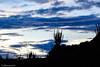 Shadows of the desert (Naturescrack) Tags: huila colombia desert desierto sunset atardecer sombra shadow silueta silhoutte nikon nikkor landscape paisaje sky cielo