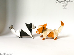 Origami Papillons - Barth Dunkan. (Magic Fingaz) Tags: anjing barthdunkan chien chó dog hond hund köpek origami origamidog perro pies пас пес собака หมา 개 犬 狗