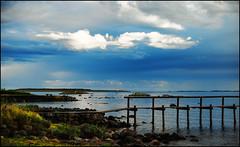 Larkollen, Norway (Eline Lyng) Tags: landscape nature seascape sea coast coastline sletter isle larkollen norway rygge leica leicasl sl noctilux095 095 50mm polarizingfilter filter silverefex fujivelvia water birds clouds sky
