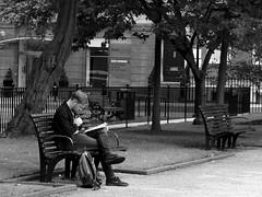 Reading in the park (haiku-do.photography) Tags: leeds parksquare reading book man blackandwhite bw streetphotography streetart urbanphoto urban leedslife leedsphotography nikon nikond3300