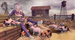 Piglet Playtime (Duchess Flux) Tags: arcade theliaisoncollaborative blueberry fameshed empyreanforge redmint deetalez catwa zibska jian 22769 weloveroleplay artisanfantasy secondlife pigs piglets farm rural sl
