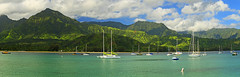 Hanalei Bay (Matt Champlin) Tags: september hawaii kauai hanaleibay bay boat boating pano blue aqua sail sailboats amazing mountains napalicoast napali incredible paradise beach tropical usa canon 2017 friday tgif jungle exotic