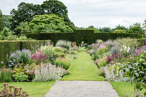 Glenarm Castle - Walled Gardens