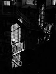 Im Elbtunnel-Treppenhaus, Hamburg (hotom39) Tags: street mensch sw bw schwarz weis black white stadt strase hamburg germany elbtunnel personen