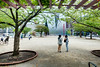 The facade, The Sumida Hokusai Museum (すみだ北斎美術館) (christinayan01 (busy)) Tags: sanaa kazuyo sejima architecture museum building perspective tokyo japan