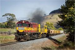 2011 + 2006 Near Rekuna (Trains In Tasmania) Tags: australia tasmania wattle wattles train ballasttrain dq dqclass dq2011 gm emd scene scenery tasmaniancountryside tasmanianscenery trainsintasmania stevebromley ef35350mm13556lusm canoneos550d