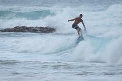 J68A6835-2 (patriciacorsiatto) Tags: hawaii2017 at beach