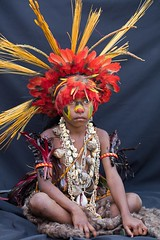 boy red feathers black drop sheet (kthustler) Tags: goroka singsing papuanewguinea tribes huliwigmen mudmen