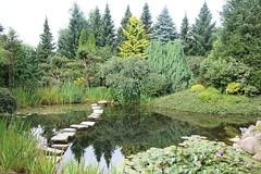 036A3566 (zet11) Tags: ogrody tematyczne hortulus dobrzyca garden plant