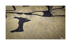 ... (ángel mateo) Tags: ángelmartínmateo ángelmateo elejido almería andalucía españa balerma columpio niño parque tierra huella sombra juego zapato mecedor andalusia spain child earth footprint game shadow swing