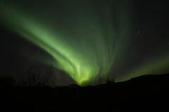 Aurora over Salten (Elfworld) Tags: auroraborealis aurora northernlights arcticlights polarlights fauske sørfold norway northernnorway nordnorge nordland sky stars autumn september