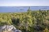 Koli - Finland