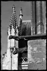 9 - Tours - Cathédrale Saint-Gatien - Chimères (melina1965) Tags: juillet july 2007 centrevaldeloire indreetloire tours nikon d80 noiretblanc blackandwhite bw sculpture sculptures église églises church churches ciel sky nuage nuages cloud clouds