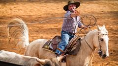 O momento decisivo (Ars Clicandi) Tags: paraná brasil br brazil parana jaboti prova do laço comprido peao peão boiadero boiadeiro cowboy