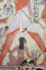 Nebamun´s daughter (konde) Tags: nebamun 18thdynasty thebes newkingdom tombrelief tombpainting ancientegypt britishmuseum art hieroglyphs treasure