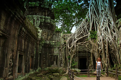 Nature's Revenge, Ta Prohm. Cambodia (Chandana Witharanage) Tags: cambodia taprohm naturesrevenge southeastasia ruins angkormwat siemreap overgrown roots bayon rajavihara khmertemple architecture archaeologicalsite doorway history buddhist buddhism tourist touristattraction travel nature naturallight fence 7dwfsaturdaylandscape}