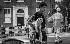 Walking the dog in the streets of Amsterdam (Pieter van de Ruit) Tags: amsterdam olympuse1m netherlands holland dog boy streetphotography blackwhite hond jongen straatfotografie
