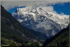 Wetterhorn depuis Burglauenen (jamesreed68) Tags: wetterhorn alpes suisse oberland bernois montagne mountain schweiz paysage nature burglauenen canon eos 600d