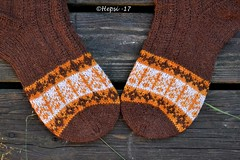 2017-08-04 Kanteletar (8) (hepsi2) Tags: tds2017 tds2017kanteletar kanteletar socks sukat colorwork strandedknitting