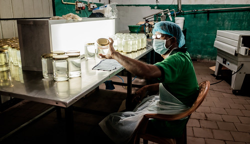 Virgin coconut oil factory