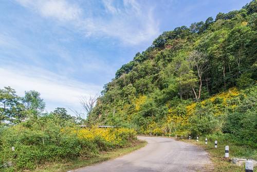 wiang kaen district - thailande 42