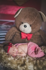 :D (Mááh :)) Tags: urso bear baby bebê ensaio newborn