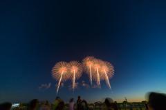 DSC02251 (ishizen) Tags: sony a7ii α7ii japan tokyo sel55f18z photo photoshoot photograph camera mirrorless zeiss hanabi 花火 山形 酒田 sakata yamagata firework sel1224g