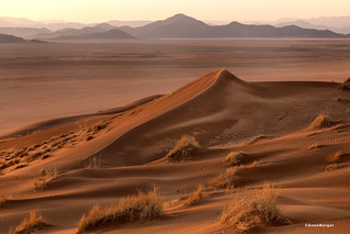 Early morning in the red dunes