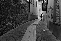 Street of Trento (oiZox) Tags: streetphotagraphy street trento arquitecture walking world europe exterior town travelling young urban urbano incontri imperatore introspectus italy italia image orlandoimperatore ombreeluci orlando observing oldtown ombre people photography paseo photo negro nero light lux life luz licht libre lines love kultur journey happy human happiness gente fotourbana depthoffield dof shadow silhouette zox zoximage zwart city citta callejera calle ciudad cityscape viaggiare blackwhite blanconegro bw monocromatico mono monochrome trentino alto adige nikon d750