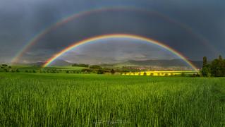 Sunshine under the Rainbow