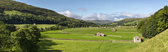 Gunnerside bottoms, Swaledale (Keartona) Tags: northyorkshire yorkshire yorkshiredales gunnerside gunnersidebottoms meadows green fields barns stonewall drystone walls sunny september morning stitchedimage panorama panoramic landscape countryside beautiful view valley
