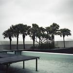 tropical pool thumbnail